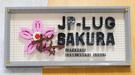 SakulugAozora_201911_005.jpg